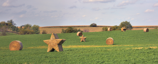 Sue Berkey — The Star Bales